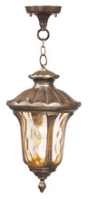 Livex Lighting 7654-50 - 1 Light Moroccan Gold Chain Lantern