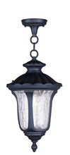 Livex Lighting 7854-04 - 1 Light Black Chain Lantern
