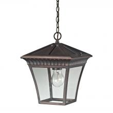 Thomas 8411EH/70 - Ridgewood 1 Light Outdoor Pendant In Hazelnut Br
