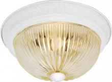 "Nuvo SF76/191 - 2 Light 11"" Flush Mount"